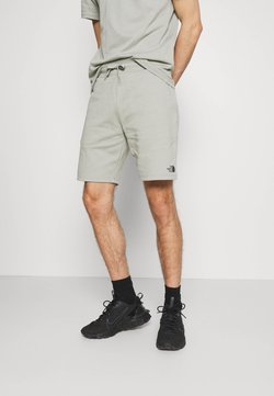 The North Face - GRAPHIC LOGO - Shorts - wrought iron