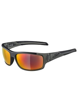 Alpina - TESTIDO - Sportbrille - anthracite matt
