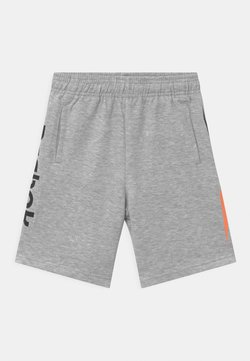 Reebok - VECTOR PLACEMENT - Shorts - light heather grey