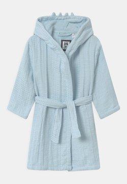 Cotton On - BOYS LONG SLEEVE GOWN - Peignoir - frosty blue