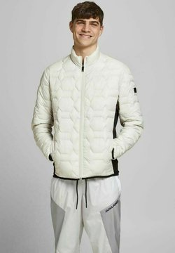 Jack & Jones - Winterjacke - silver birch