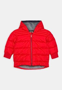 Timberland - PUFFER JACKET BABY - Winterjas - bright red