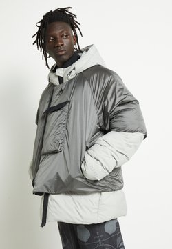 adidas Performance - URBAN COLD.RDY OUTDOOR JACKET - Daunenjacke - metallic grey