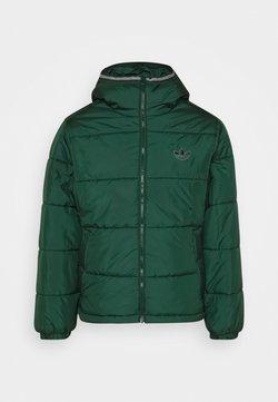 adidas Originals - HOODED PUFF - Winterjacke - green
