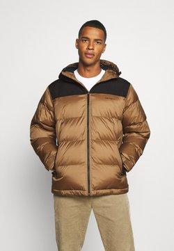 Carhartt WIP - LARSEN JACKET - Winterjacke - hamilton brown/black