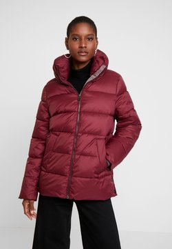 Esprit - THINSULATE - Winterjacke - bordeaux red