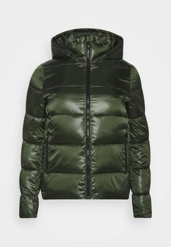 Calvin Klein Jeans Plus - SHINY SHORT PUFFER - Winterjacke - khaki