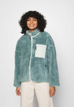 Obey Clothing - MESA SHERPA JACKET - Winterjacke - mineral blue