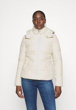 Calvin Klein Jeans - Winterjacke - soft cream