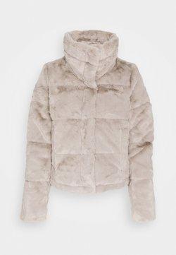 Abercrombie & Fitch - MINI PUFFER - Winterjacke - grey fur