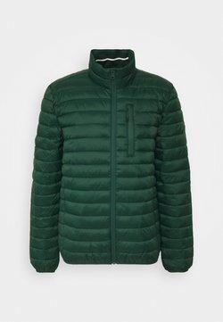 Esprit - RECTHINS  - Winterjacke - dark green