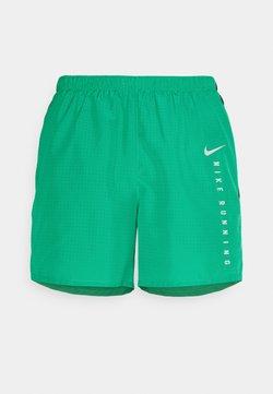 Nike Performance - Pantalón corto de deporte - neptune green/black
