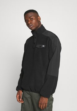 Dickies - PORT ALLEN - Veste polaire - black