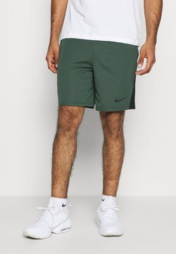 Nike Performance - TRAIN - Urheilushortsit - galactic jade/black