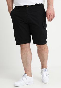 Dickies - NEW YORK - Shorts - black