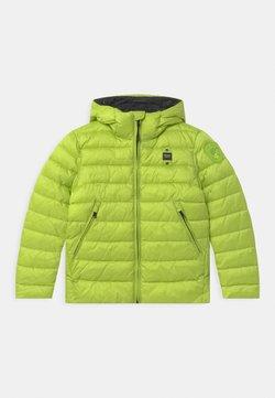 Blauer - GIUBBINI CORTI IMBOTTITO OVATTA - Winterjas - light green