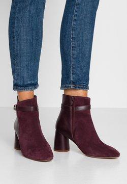 mint&berry - Classic ankle boots - bordeaux