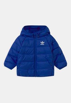 adidas Originals - UNISEX - Gewatteerde jas - royal blue/white