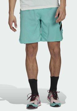adidas Performance - TERREX - Pantalón corto de deporte - green