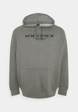 s.Oliver - LANGARM - Sweatshirt - light grey
