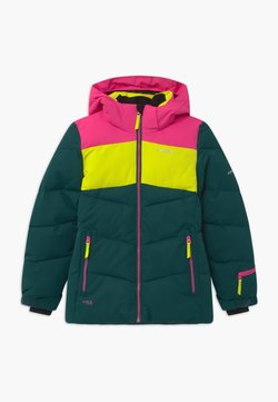 Icepeak - LAGES UNISEX - Snowboardjacke - antique green