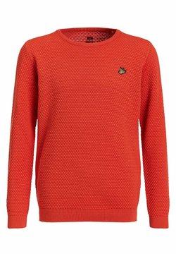 WE Fashion - JONGENS FIJNGEBREIDE MET - Trui - orange