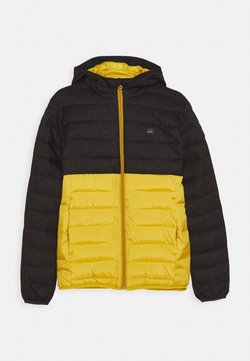 Quiksilver - SCALY MIX YOUTH - Winterjas - honey