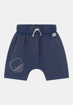Turtledove - LAVA WASH - Shorts - blue