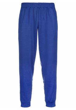adidas Originals - BIG TREFOIL OUTLINE TRACKSUIT BOTTOM - Verryttelyhousut - royal blue