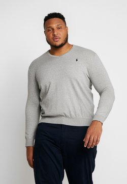 Polo Ralph Lauren Big & Tall - PIMA TIPPING - Pullover - andover heather