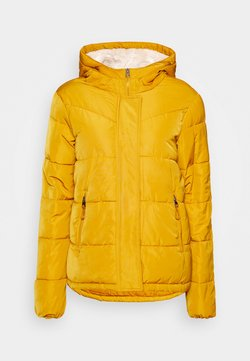 Springfield - PLUMAS MID WEIGHT - Winterjacke - yellow/pistachio