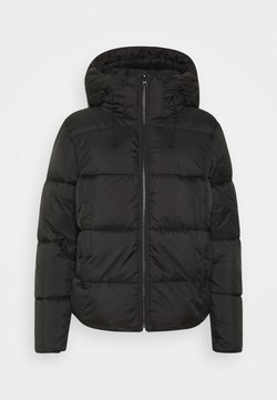 TOM TAILOR DENIM - Winterjacke - deep black