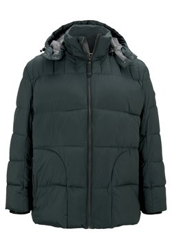 TOM TAILOR - Winterjacke - dark gable green