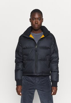 The North Face - PARALTA PUFFER AVIATOR - Daunenjacke - aviator navy