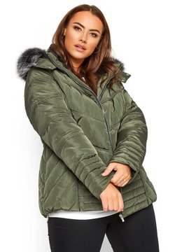 Yours Clothing - Winterjacke - green