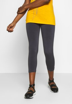Icebreaker - MOTION SEAMLESS 3Q - Tights - panther