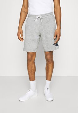 Hollister Co. - EXPLODED ICON - Shorts - grey