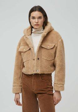 PULL&BEAR - MIT KAPUZE - Winterjacke - brown