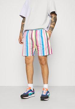 Vintage Supply - RETRO STRIPE - Shorts - multi