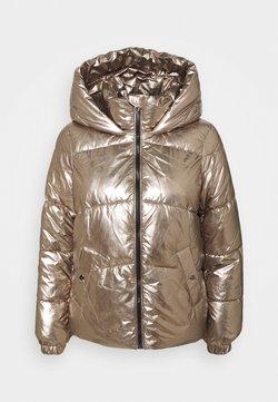 Vero Moda Petite - VMUPSALASILVER JACKET - Winterjacke - silver