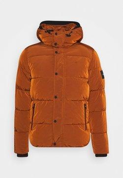 Calvin Klein - CRINKLE  - Winterjacke - brown