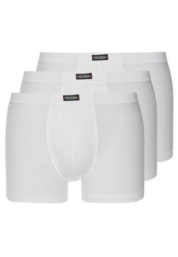 Ceceba - ARCEN 3 PACK - Shorty - white