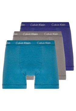 Calvin Klein Underwear - TRUNK 3 PACK - Shorty - blue