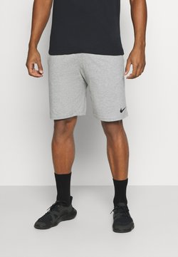 Nike Performance - DRY FIT - Pantalón corto de deporte - grey heather