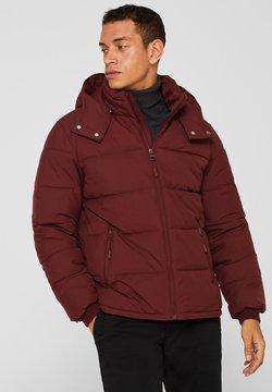 Esprit - Winterjacke - dark red