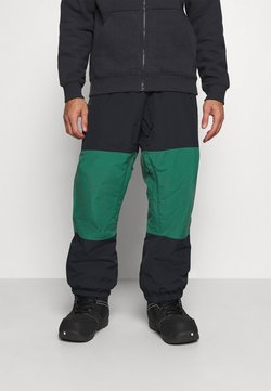Quiksilver - BEATER - Pantalón de nieve - antique green