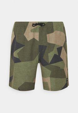 Burton - CREEKSIDE MAYFLY SWEDISH CAMO - Shorts - beige