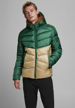 Jack & Jones - Winterjacke - trekking green