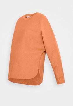 Ripe - ANDY JUMPER - Sudadera - terracota