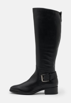 ALDO - DASINEURA - Stiefel - black